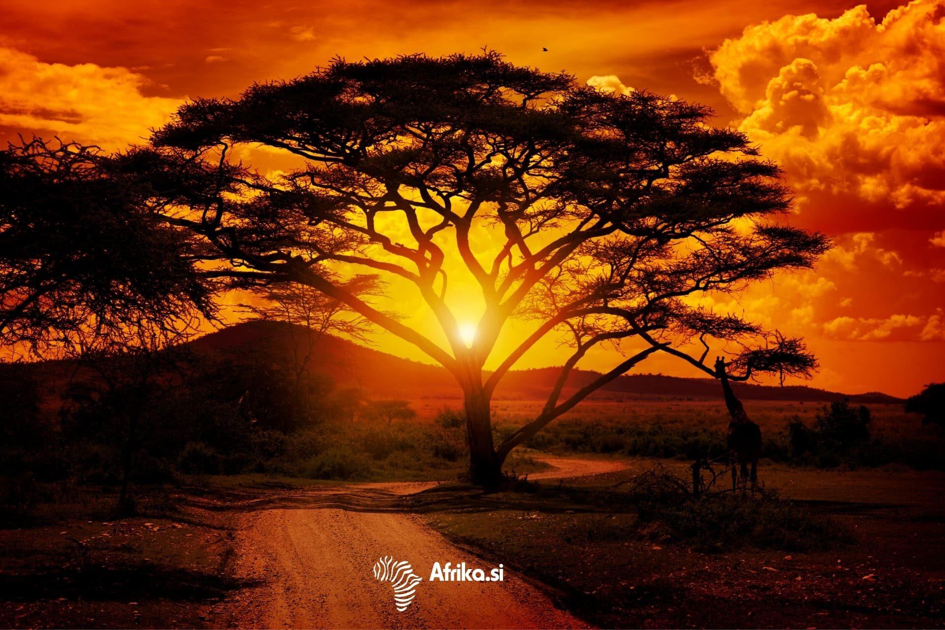 Lifetrek treking potovanja: Afrika
