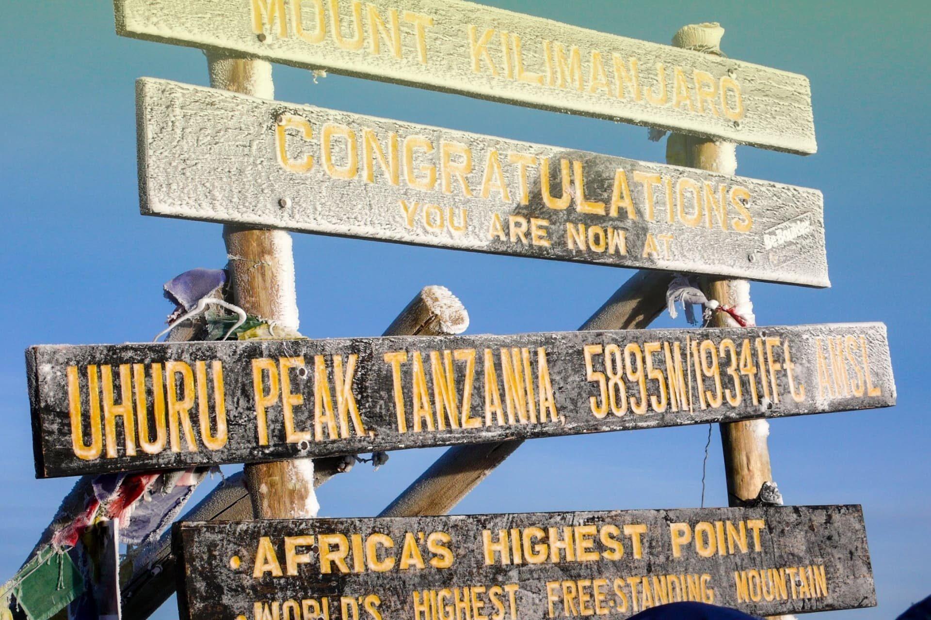 Lifetrek treking potovanja: Kilimanjaro