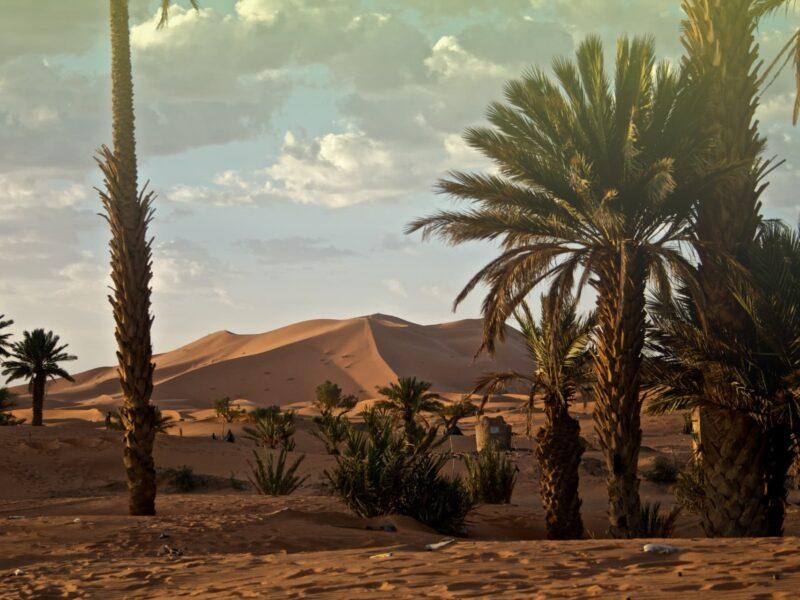 Lifetrek treking potovanja: Maroko potovanje