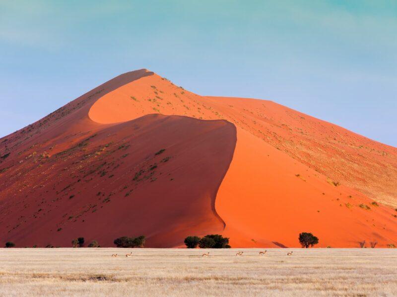 Lifetrek treking potovanja: Južna Afrika